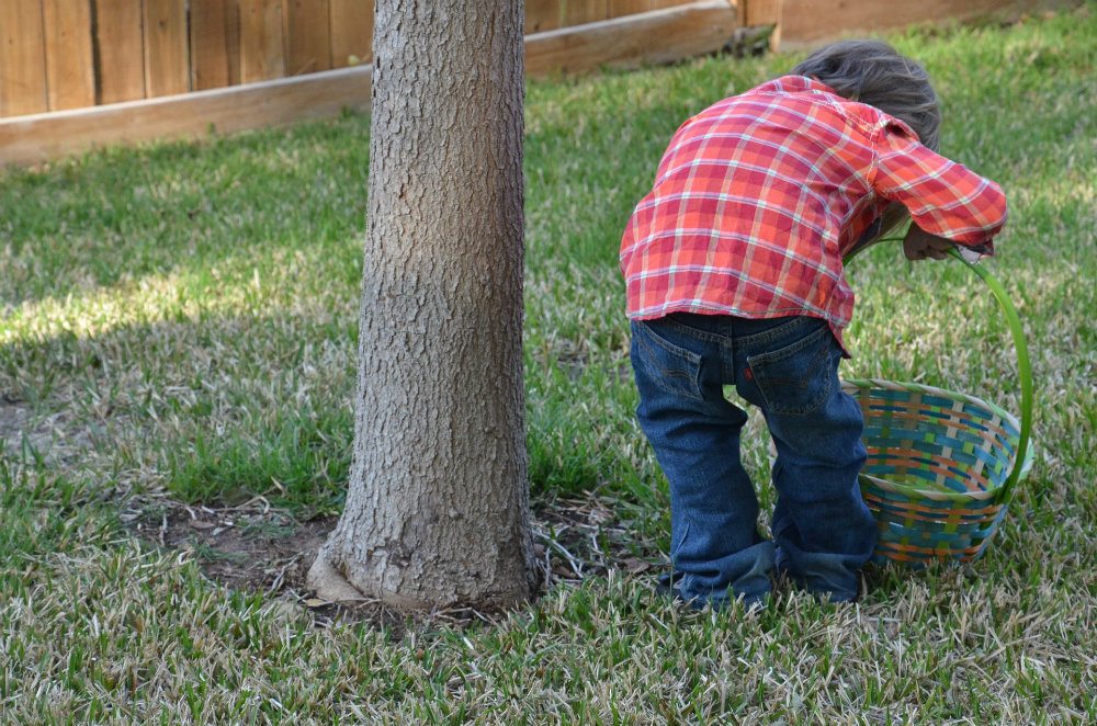 tips for a great Easter egg hunt